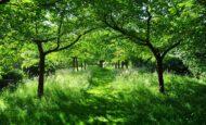 Büyünün Fiziksel ve Ruhsal Belirtileri Nelerdir?