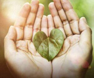 Aşk Duası Okutanlar ve Yorumları